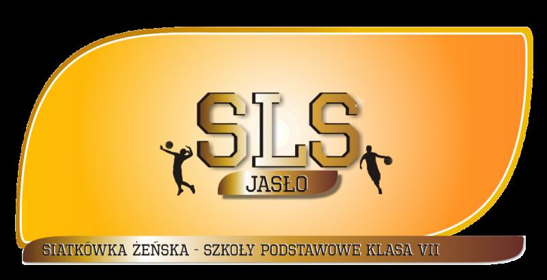 Siatkowka_podstawowe_VII